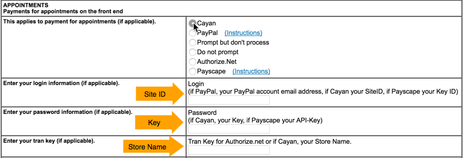 cayan-payments.png